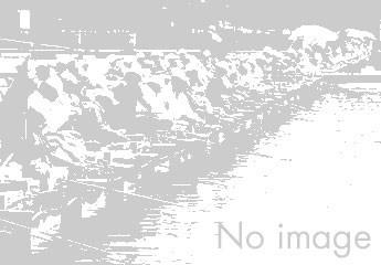 七曲池|野釣り場|へら鮒天国