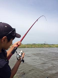 千葉県/柏市 手賀沼界隈 - 鯉釣り隊