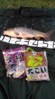 20171003_nobun sama_1.jpg