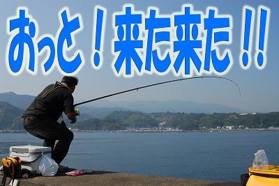 kago_02.jpg