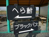 yosibaen_06.jpg