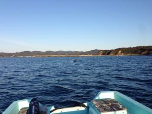 釣り場風景.JPG
