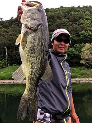 bass2_0623.jpg