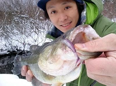bass4_0126.jpg