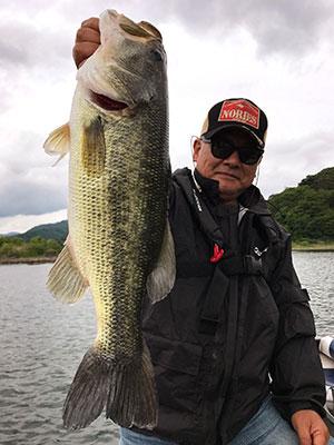 bass5_0615.jpg