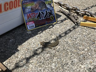 20180511_seichi sama_3.jpg