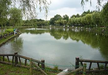 北本総合公園の池|へら鮒天国埼玉県北本総合公園の池北本総合公園の池 釣果情報一覧
