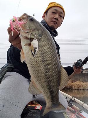 bass2_0306.jpg